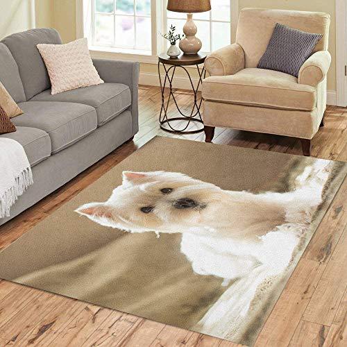 (Pinbeam Area Rug Dog West Highland White Terrier Portrait Adopt Animal Home Decor Floor Rug 5' x 7' Carpet)