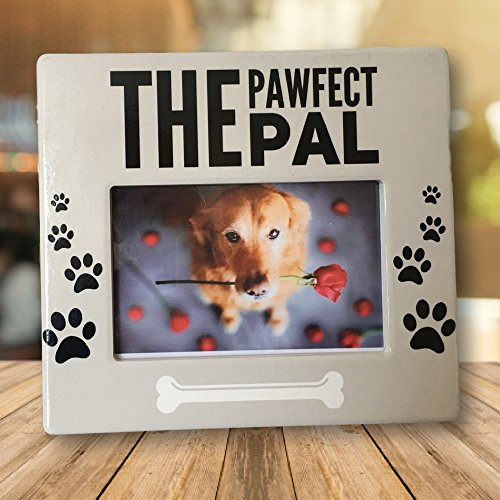 Pal Furry (Dog Picture Frame - The Pawfect Pal Photo Plaque - 4 x 6 Inch Photograph Opening - Dog Frames)