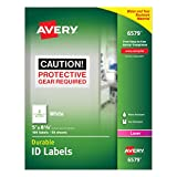 Avery Id & Specialty Labels (6579)