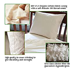 Youth Bed Pillow by Dreamtown Kids For Growing Kids Not Quite Ready For An Adult Size. Delicate Handmade Organic Cotton Shell. Your Pure Sleep 16x22 Size Works With Toddler & Kids Beds. Made In USA.