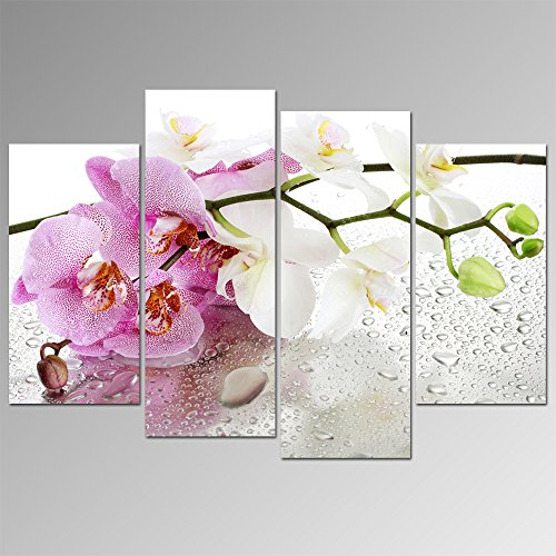 Sea Charm- Canvas Wall Art Ready to Hang,modern Nature Orchid Flower Picture,phalaenopsis,wall Painting Art for Home Decoration,stretched and Framed,floral Canvas Print Ready to Hang (Orchid Picture Phalaenopsis)