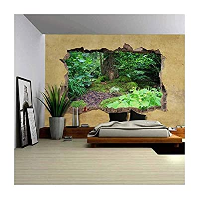 Incredible Expertise, Little Wooden Fairy Tale Door in a Tree Trunk Viewed Through a Broken Wall Large Wall Mural Removable Peel and Stick Wallpaper, That You Will Love