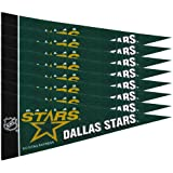 Rico NHL Stars 8 Pc Mini Pennant Pack Sports Fan Home Decor, Multicolor, One Size
