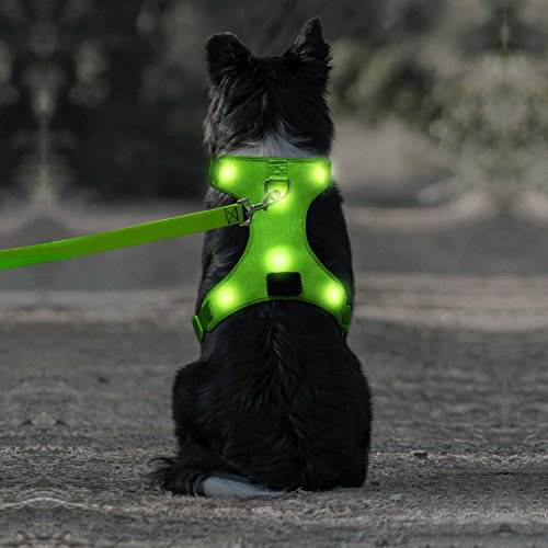 Cute Harness, Bad Battery