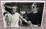 Bride of Frankenstein Vintage Movie Photo 2 x 3 Refrigerator Locker MAGNET