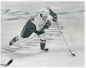 1995 Press Photo NHL Mighty Ducks of Anaheim Right Wing John Lilley - snb3899