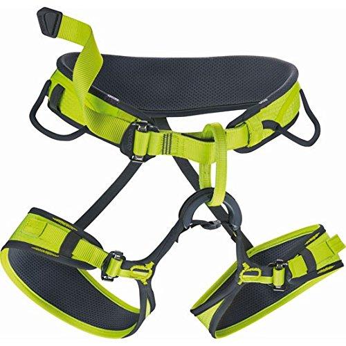 EDELRID - Jay II Climbing Harness (Oasis, Large) (Edelrid Jay Climbing Harness compare prices)