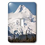 3dRose Danita Delimont - Mountains - USA, Oregon. Mt. Hood landscape. - Light Switch Covers - single toggle switch (lsp_279305_1)
