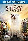 The Stray [Blu-ray]