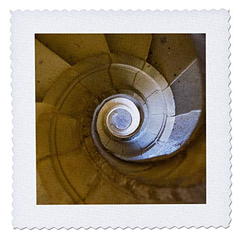 3dRose Danita Delimont - Architecture - Portugal, Tomar. Tomar Castle, Spiral staircase of the great cloister. - 22x22 inch quilt square (qs_313813_9)