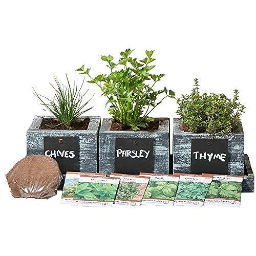 herb garden planter by planter pros complete herb garden kit indoor garden seeds growing kit grow cooking herbs basil chives oregano - Indoor Herb Garden Kit