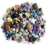 Rock & Mineral Collection Activity Kit (Over 150 Pcs) with Educational Identification Sheet plus a genuine Meteorite fragment, Fossilized Shark Teeth and Arrowheads, Dancing Bear Brand