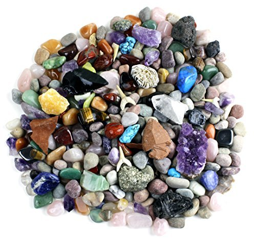 Child Genuine Agate - Rock & Mineral Collection Activity Kit (Over 150 Pcs) with Educational Identification Sheet plus a genuine Meteorite fragment, Fossilized Shark Teeth and Arrowheads, Dancing Bear Brand