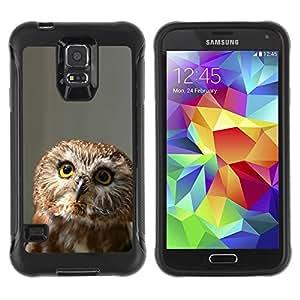 Suave TPU GEL Carcasa Funda Silicona Blando Estuche Caso de protección (para) Samsung Galaxy S5 V / CECELL Phone case / / Funny Curious Owl /