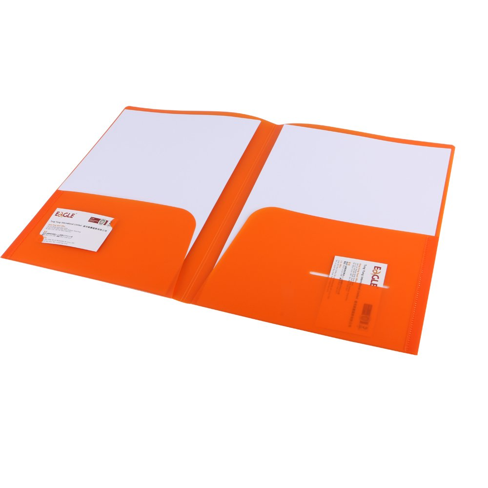Amazon.com : Eagle Heavy Duty Plastic 2 Pocket Folder For Letter ...