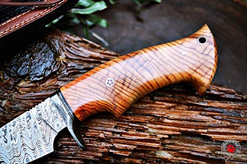Custom Handmade Hunting Knife Bowie Knife Damascus Steel Survival Knife EDC 10'' Overall Olive Wood with Sheath by Bobcat Knives (Image #1)