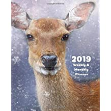 2019 Weekly and Monthly Planner: Deer Daily Organizer -To Do -Calendar in Review/Monthly Calendar with U.S. Holidays–Notes Volume 39