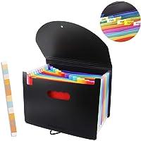 Accordian File Organizer,12 Pockets Expanding File Folder with Expandable Cover,Portable Filing Box,Desktop Accordion Folders,Plastic Colored Paper Document Paperwork Receipt Organizer(A4/Letter Size)