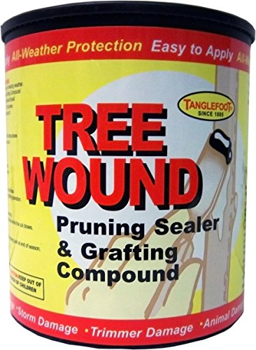 Tanglefoot Tree Wound Pruning Sealer & Grafting Compound 16 OZ (Patio Sealers)