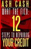 img - for What the FICO: 12 Steps to Repairing Your Credit book / textbook / text book