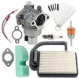 Buckbock 20 853 33-S Carburetor Carb with Air Fuel Filter Cleaner Tool Kit for Kohler SV Courage SV470 SV480 SV530 SV540 SV541 SV590 SV591 SV600 SV601 SV610 SV620 Engine