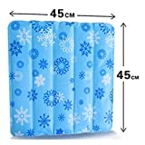 Liumltao Pet Cat Dog Summer Cooling Mat - Cold Pad For Cats and Dogs - Best For Keeping Pets Cool