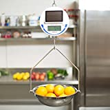 TableTop King SCS30 30 lb. Solar Power Hanging Scale, Legal for Trade