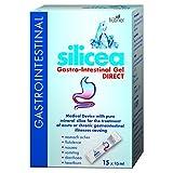 (12 PACK) - Hubner - Silicea Gastro Intestinal Gel | 15x15ml sachet | 12 PACK BUNDLE