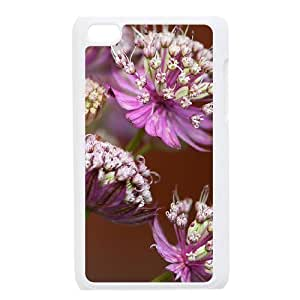 Beautiful grassland Customized Cover Case with Hard Shell Protection for Ipod Touch 4 Case lxa#457047