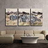 "wall26 - 3 Piece Canvas Wall Art - Herd of Wildebeest and Zebra Grazing Together on Grasslands of African Savanna - Modern Home Decor Stretched and Framed Ready to Hang - 16""x24""x3 Panels"