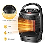 Ceramic Space Heater, 750W/1500W Portable Desk Small Quiet Fast Heating Fan, Overheat & Tip-Over Protection, Energy Efficient Space Heater for Office Desktop and Home