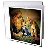 Best 3dRose Fathers - 3dRose Lions Father and Son - Greeting Cards Review