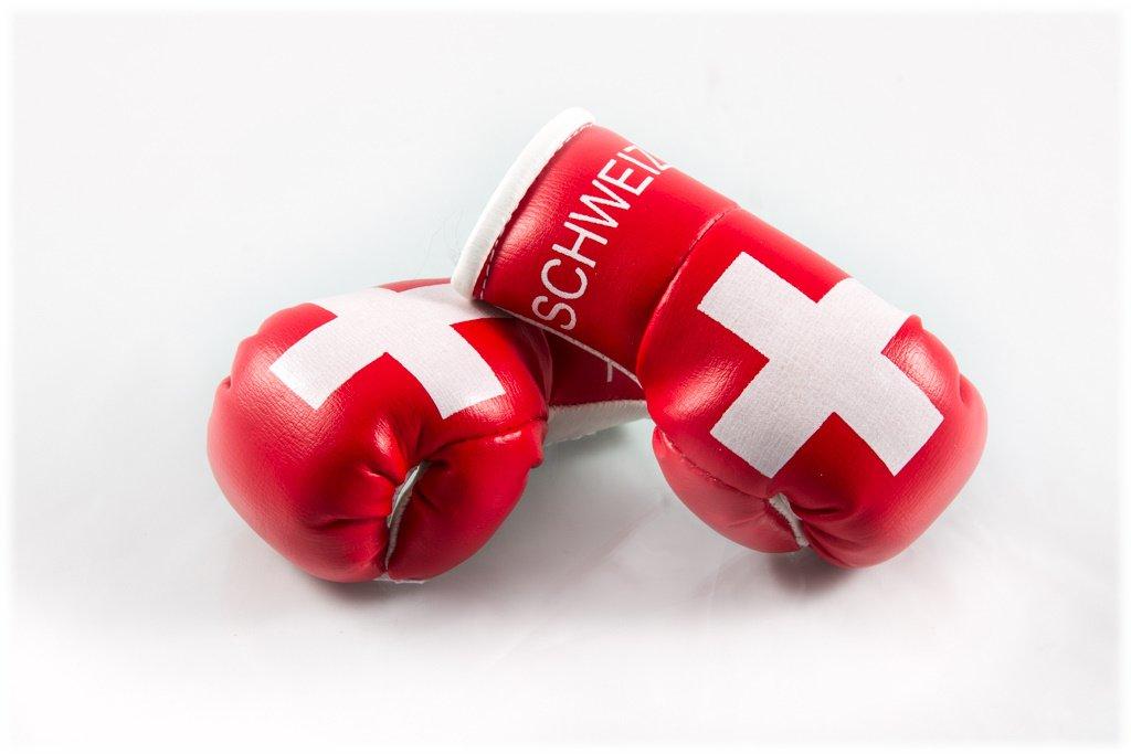 Mini Boxhandschuhe SCHWEIZ f/ür Auto-Innenspiegel 2 St/ück B 1 Paar Miniboxhandschuhe z