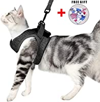 Cat Harness and Leash Set for Walking 360° wrap-Around Small Cat and Dog Harness Cushioning and Anti-Escape Suitable for...