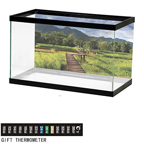 bybyhome Fish Tank Backdrop Asian,Rice Field Oriental Farmland,Aquarium Background,48