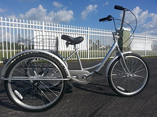 SIX SPEED ADULT TRICYCLE SILVER