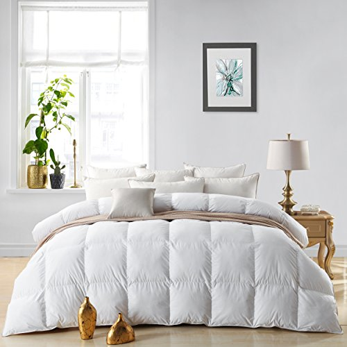 Egyptian Bedding LUXURIOUS 800 Thread Count HUNGARIAN GOOSE DOWN Comforter Duvet Insert - King Size, 750 Fill Power, 50 oz Fill Weight, 100% Egyptian Cotton - Comforter King Opulence