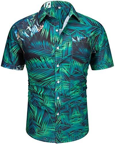 Leaves Mens Hawaiian Aloha Shirt (Men's Casual Short Sleeve Button Down Print Aloha Beach Tropical Hawaiian Shirt Leaf C Medium)