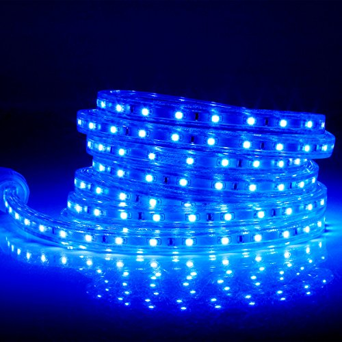 3 Wire Led Rope Light - 6