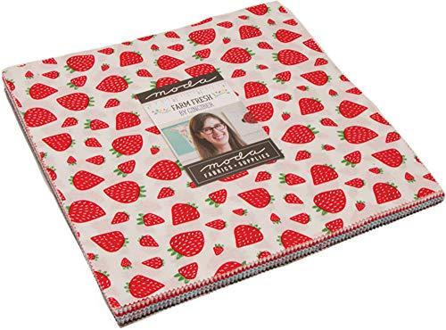 [해외]Farm Fresh Layer Cake 42-10 Precut Fabric Quilt Squares by Gingiber / Farm Fresh Layer Cake, 42-10 Precut Fabric Quilt Squares by Gingiber