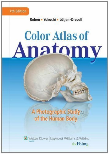 Color Atlas of Anatomy: A Photographic Study of the Human Body (Point (Lippincott Williams & Wilkins)) 7th (seventh), North Ameri Edition by Rohen MD, Johannes W., Lutjen-Drecoll MD, Elke, Yokochi PhD, published by Lippincott Williams & Wilkins (2010)