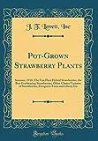 Amazon / Forgotten Books: Pot - Grown Strawberry Plants Summer, 1918 The Van Fleet Hybrid Strawberries, the Best Everbearing Strawberries, Other Choice Varieties of . Trees and Liberty Iris Classic Reprint (J T Lovett Inc)