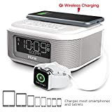 Best Iphone Alarm Clock Docks - iHome Bluetooth Stereo Dual Alarm Clock Withspeakerphone Wireless Review