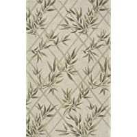 Momeni Rugs VERANVR-04IVY2030 Veranda Collection, Contemporary Indoor & Outdoor Area Rug, Easy to Clean, UV protected & Fade Resistant, 2 x 3, Ivory