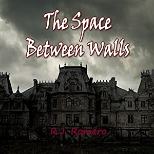 The Space Between Walls Audiobook
