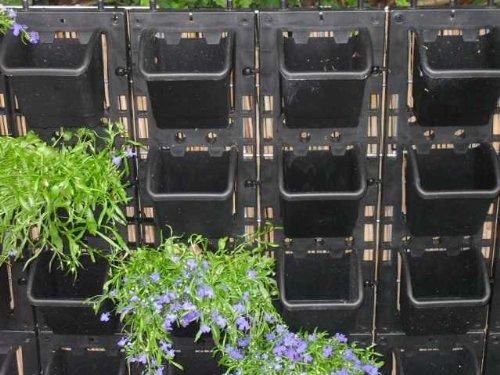 Amazon De Vertiflower Pflanzschale Green Vertikal Garten