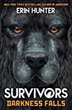 Survivors Book 3: Darkness Falls