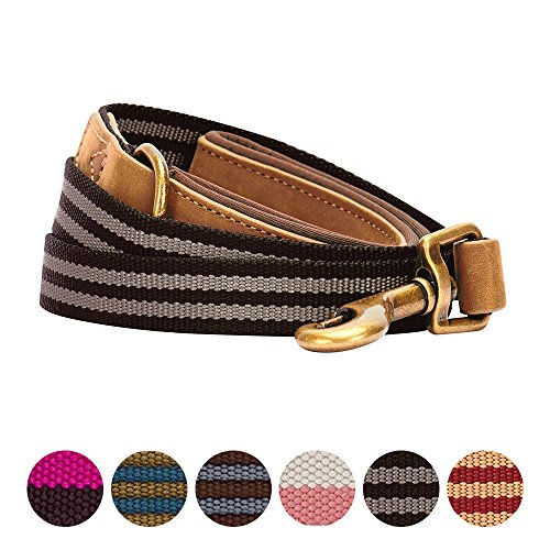 Blueberry Pet 6 Colors Polyester Fabric and Soft Genuine Leather Webbing Dog Leash with Soft & Comfortable Handle, 6 ft x 1'', Chocolate and Taupe, Leashes for Dogs by Blueberry Pet