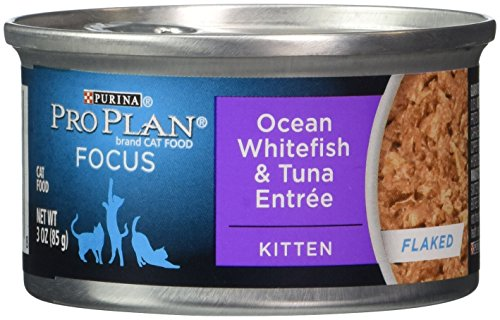 Purina Pro Plan Canned Kitten Ocean Whitefish And Tuna Food, 3 Oz.