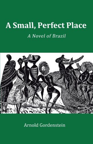 A Small, Perfect Place: A Novel of Brazil